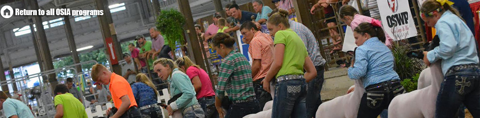 Ohio Sheep Improvement Association - Lead Program